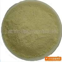 供应仙人掌粉 100%优质纯粉 厂家直供 食品QS级