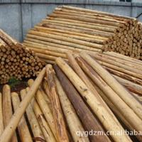 木桩 杉木原木 建筑/家具家居原材料