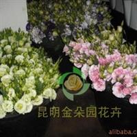 供应厦门玫瑰 百合 康乃馨鲜花批发 全国花卉供应 鲜切花批发