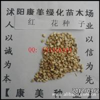 低价出售:中药材种子 新种子 红花种子