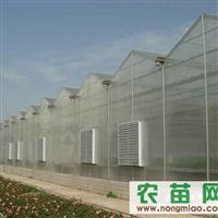 温室大棚、智能温室、日光温室