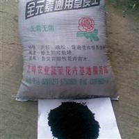福州北峰专业提供优质草炭土批发