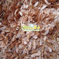 批发供应香椿种子香椿小苗香椿净籽播种方法林木种子供应商