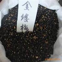 专供金缕梅种子、绿化苗木种子、林木种子、草坪类种子、花卉种子