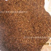 产地供应批发供应高产香椿籽香椿种子香椿苗