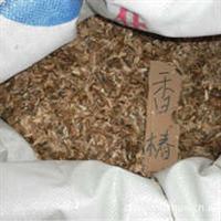 """直销农作物种子蔬菜种子红油香椿种子被称为""""树上蔬菜"""""""