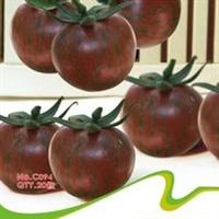 特色蔬菜种子系列(家庭装)>紫珍珠番茄(20粒)