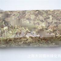 精装蝴蝶兰专用水苔苔藓优质兰花土栽培介质高温杀菌保湿营养土