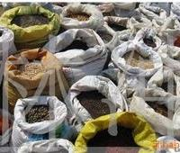 供应红叶小檗种子,大量出售
