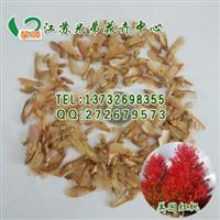 热销推荐真宗美国红枫种子种子枫叶很红发芽率质量保证