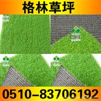 香港、澳门G021PP苹果绿屋顶装饰仿真草坪【厂家直销】
