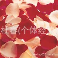 基地批发各类新鲜花瓣/玫瑰/百合/康花/非洲菊/