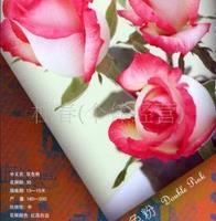玫瑰花批发玫瑰鲜花玫瑰切花鲜切花双色粉复色花边色