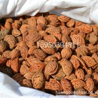 桃核批发优质的毛桃核毛桃胡桃树种子桃胡子