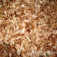 香椿种子(红油椿、优质、发芽率60%)