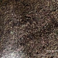 喷雪花种子(适宜在各类园林绿化、质量好)
