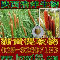 供应蒲黄提取物/CattallPollen/植物提取物