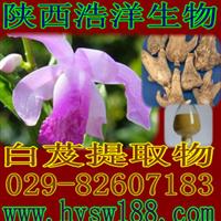 厂家现货供应白芨提取物/(纯天然植物提取物)