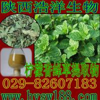 供应柠檬香蜂草提取物/天然植物提取物