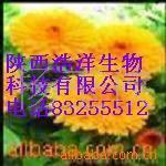 供应叶黄素/万寿菊提取物/各种天然植物提取物