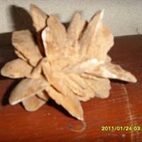 举世无双稀世珍宝沙漠玫瑰--喜太郎