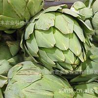 富贵者的佳肴、欧洲蔬菜之皇----朝鲜蓟