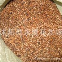 批发草樱种子樱桃种子樱桃树种子种子饱满纯度高质量第一