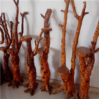 山东原生态枣树枣木工艺品原生态根雕花架枣树墩子各种工艺摆件