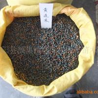 厂家直销优质石楠种子