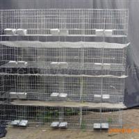 兔笼 9位种兔笼 24位商品兔笼 獭兔笼