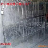 供应养兔笼具獭兔笼具笼子