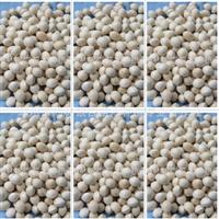 供应银杏种子白果种子纯天然滋补品热卖中(图)