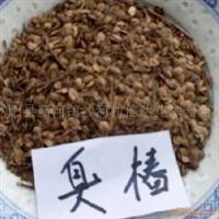 低价供应当年现采摘的臭椿种子石楠种子