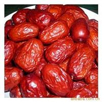 推荐陕西特产枣树大苗当年结果奥