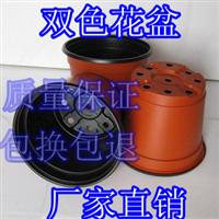 园艺用品塑料花盆双色花盆双色盆创意花盆花盆批发营养钵