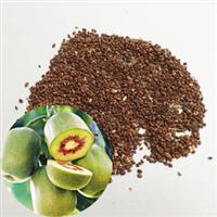 林信超级水果之王猕猴桃种子果树种子猕猴梨藤梨羊桃