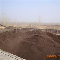 【量大�|��】栽培�I�B土�B花�I�B土有�C�I�B土