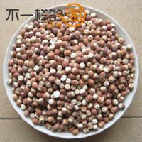 中药材优质芡实芡实米芡实仁芡实片