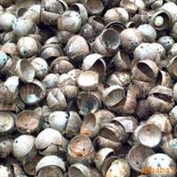 优质供应品质工艺品半边椰子壳(图)