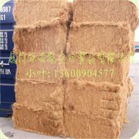 供应优质椰网(CY4:400克/平方米)