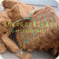 供应优质椰子纤维(适用于生产高档床垫与坐垫)