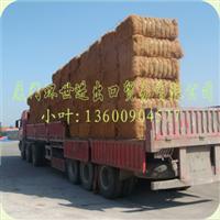 现货供应印尼椰丝/床垫椰丝(用生产高档床垫、坐垫与椰棕花篮)