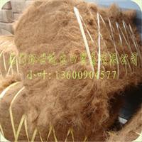 全国各大基本港订货大促销批发椰丝棕丝