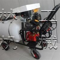 种植园喷雾机樱桃园打药机喷雾机打药机价格