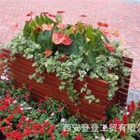 户外实木长方形花盆道路美化实木花盆