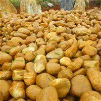 园林石材、景不雅观石、黄蜡石