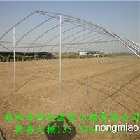 周口薄膜温室大棚建设技术要点生态园大棚建设蔬菜大棚安装公司