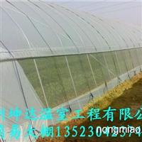 洛阳搭建花卉种植大棚育苗温室大棚大棚找郑州坤达