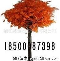 北京仿真红枫树厂家定做批发租凭供应商