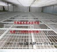 优质温室专用移动苗床,成长周期多久